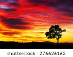 tree in the mountain | Shutterstock . vector #276626162