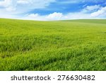spring meadow and blue sky | Shutterstock . vector #276630482