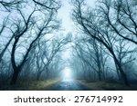 Mysterious Dark Autumn Forest...