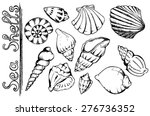 sea shells vector monochrome... | Shutterstock .eps vector #276736352