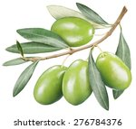 green olives with leaves on a... | Shutterstock . vector #276784376