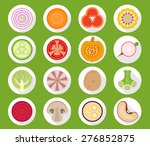 vegetable icons with long shadow   Shutterstock .eps vector #276852875