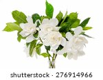 Small photo of Set from beautiful gardenia bouquet
