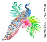 peacock on white background.... | Shutterstock .eps vector #276979568