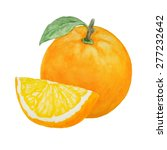 watercolor orange fruit... | Shutterstock . vector #277232642