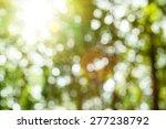 natural  blur abstract... | Shutterstock . vector #277238792