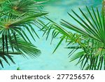 palm branches by turquoise... | Shutterstock . vector #277256576