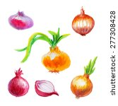watercolor onion pack on white... | Shutterstock .eps vector #277308428