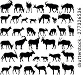 Antelope Collection   Vector...