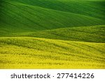 Rapeseed Yellow Green Field In...