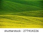Rapeseed Yellow Green Field In...