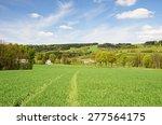 landscape of the orlic...   Shutterstock . vector #277564175
