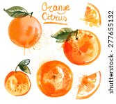 set of oranges painted with... | Shutterstock . vector #277655132