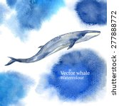 vector watercolor whale | Shutterstock .eps vector #277888772