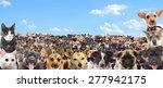 set of pet watching | Shutterstock . vector #277942175