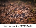 wedding rings | Shutterstock . vector #277955486
