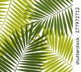 palm leaf  background vector... | Shutterstock .eps vector #277972712