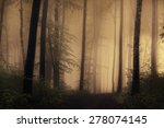Horror Light In Dark Forest