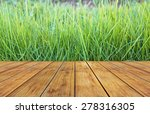 fresh spring green grass with... | Shutterstock . vector #278316305