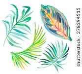watercolor tropical leaves... | Shutterstock .eps vector #278394515