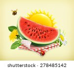 summer  time for a picnic ... | Shutterstock .eps vector #278485142
