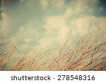 vintage nature background. | Shutterstock . vector #278548316