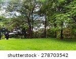 green trees in beautiful park   Shutterstock . vector #278703542