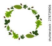 stock photo  vintage herbarium... | Shutterstock . vector #278739806