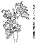 vector black and white sketch... | Shutterstock .eps vector #278773565