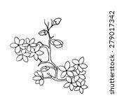 twig sakura blossoms . vector... | Shutterstock .eps vector #279017342