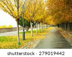 Autumnal Walkway With Chestnut...