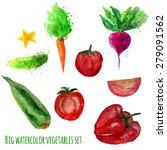 vector set of watercolor... | Shutterstock .eps vector #279091562
