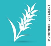 ears of wheat  barley or rye ...   Shutterstock . vector #279126875