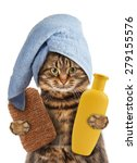 Funny Cat With Accessories For...