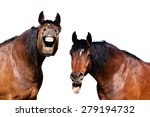 Stock photo two horses laughing at funny joke 279194732