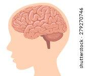 brain | Shutterstock .eps vector #279270746