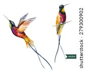 watercolor vector drawing ... | Shutterstock .eps vector #279300902