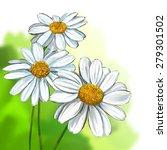 daisy vector illustration  hand ... | Shutterstock .eps vector #279301502