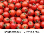 Fresh Organic Tomatoes...
