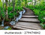 summer forest pathway in... | Shutterstock . vector #279474842