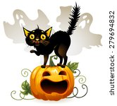 frightened cat black cat on a... | Shutterstock .eps vector #279694832