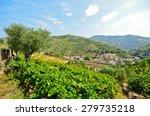 douro valley  vineyards and... | Shutterstock . vector #279735218