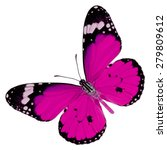 Beautiful Pink Butterfly Upper...