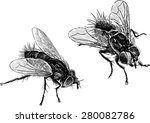 flies | Shutterstock .eps vector #280082786