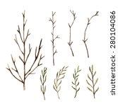 watercolor paint tree branch  ... | Shutterstock .eps vector #280104086