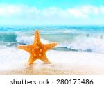 Summer Beach.  Starfish On The...