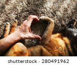 Stock photo  a person and a dog making a heart shape with the hand and paw in natural sunlight with rays of 280491962