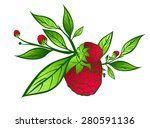 raspberry with green leaves... | Shutterstock . vector #280591136