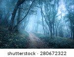 trail through a mysterious dark ... | Shutterstock . vector #280672322