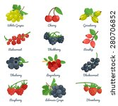 berries flat icons set with... | Shutterstock .eps vector #280706852